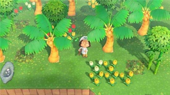 动物森友会种树的方法攻略