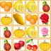 神奇水果连连看